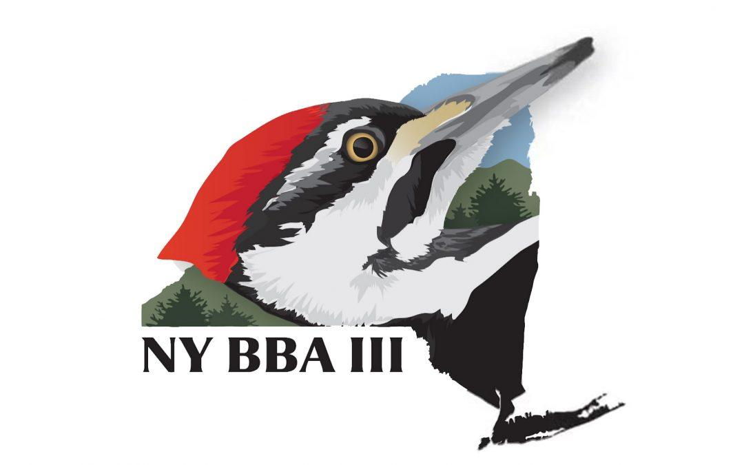 Wilbert's Christmas Tree Farm Participates in Study for the New York Breeding Bird Atlas